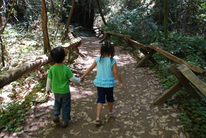 Armstrong Woods-Sonoma-County
