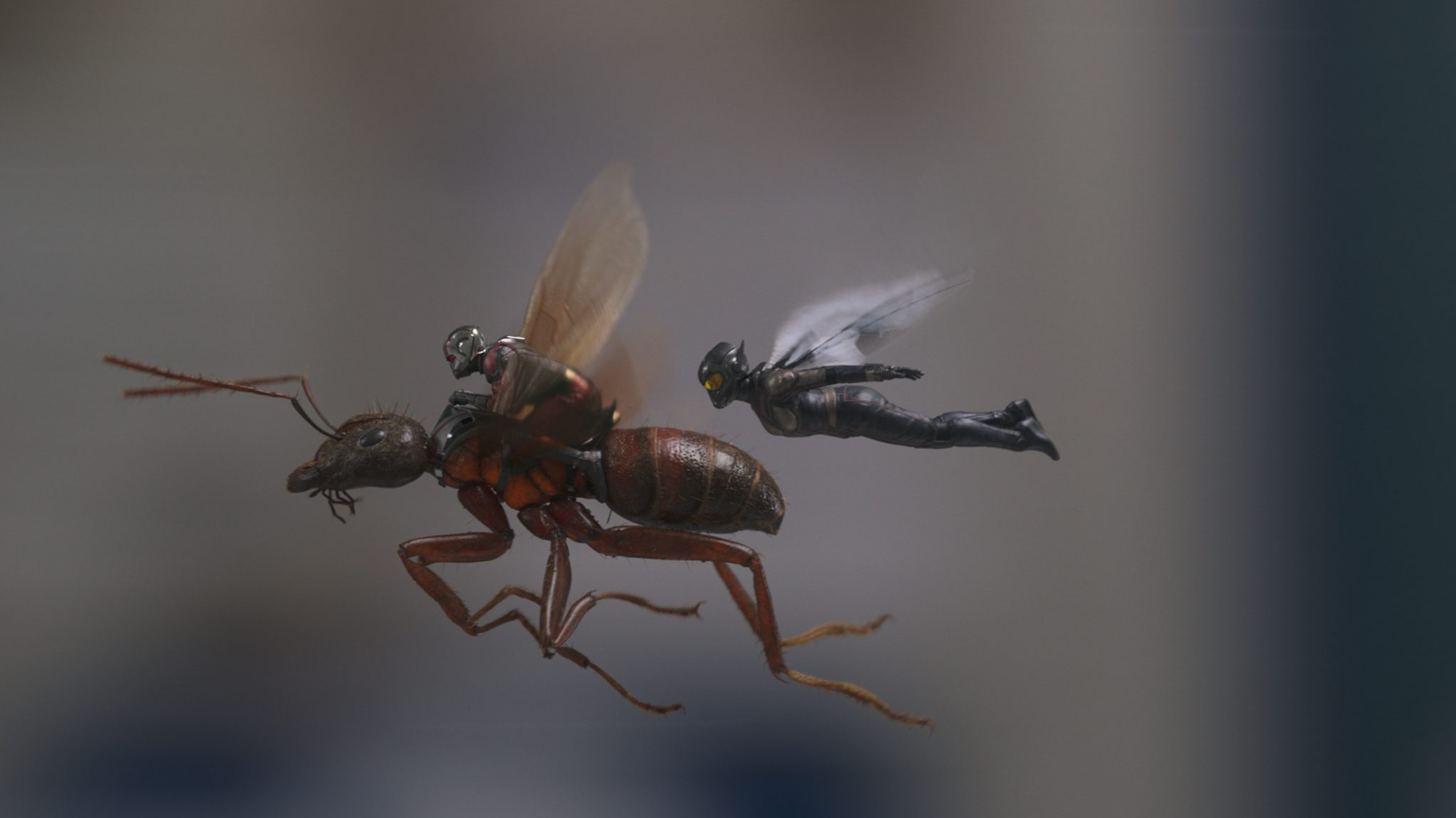 Marvel Studios-Ant-Man and the Wasp